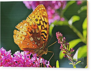 Golden Butterfly Wood Print