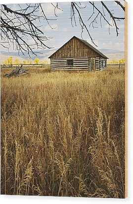 Golden Cabin Wood Print by Sonya Lang