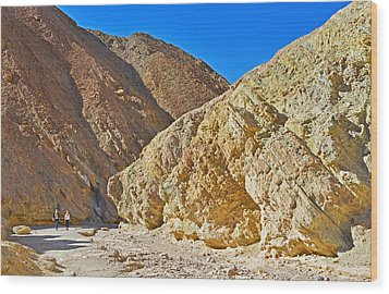 Wood Print featuring the photograph Golden Canyon - Death Valley by Dana Sohr