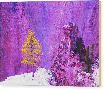 Golden Christmas In Yellowstone Wood Print by Ann Johndro-Collins