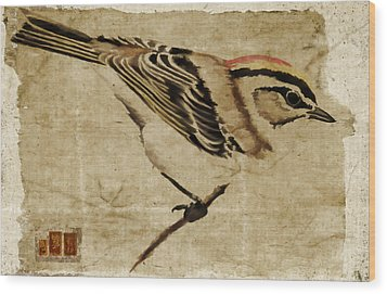 Golden-crowned Kinglet Wood Print by Carol Leigh