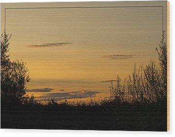 Wood Print featuring the photograph Golden Daybreak by Liz  Alderdice