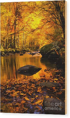 Wood Print featuring the photograph Golden Dream by Geraldine DeBoer
