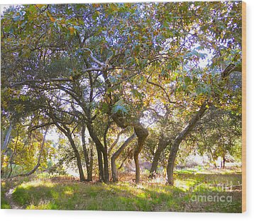 Golden Dreams Wood Print by Gem S Visionary