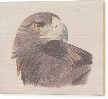 Golden Eagle Study Wood Print