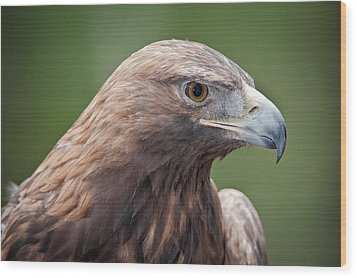 Wood Print featuring the photograph Golden Eagle by Tyson and Kathy Smith