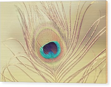 Golden Feather Wood Print by Amy Tyler