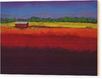 Golden Field Wood Print by David Patterson