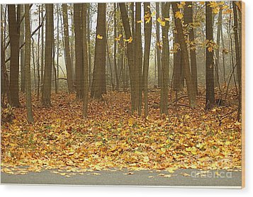 Golden Forest Art Wood Print by Boon Mee