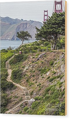 Golden Gate Trail Wood Print by Kate Brown