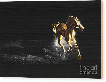 Golden Horse Wood Print by William Voon