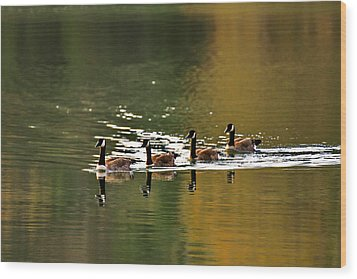 Golden Lake Wood Print by Menachem Ganon