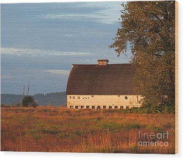 Golden Light At Nisqually Wildlife Refuge Wood Print