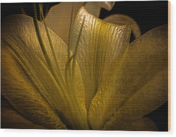 Golden Lily Wood Print by Dave Garner