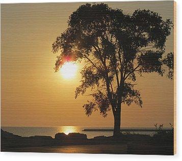 Golden Morning Wood Print by Kay Novy