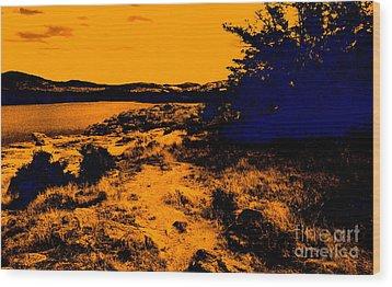 Golden Nights Wood Print by Mickey Harkins