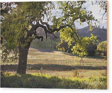 Golden Oaks Wood Print