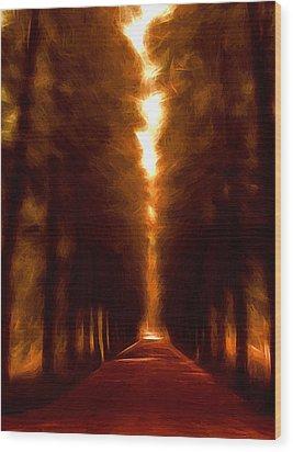 Golden October Wood Print by Steve K