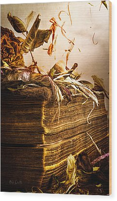 Golden Pages Falling Flowers Wood Print by Bob Orsillo