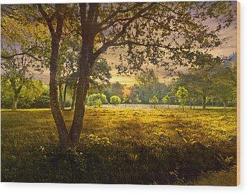 Golden Pastures Wood Print by Debra and Dave Vanderlaan