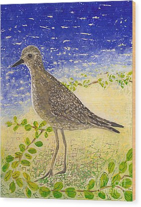 Golden Plover Wood Print by Anna Skaradzinska