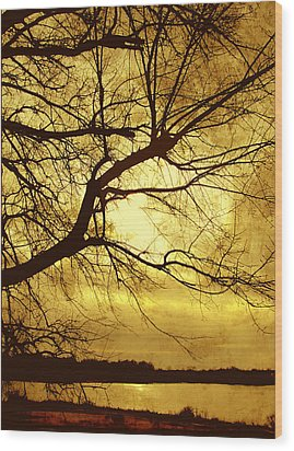 Golden Pond Wood Print by Ann Powell