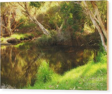 Golden Pond Wood Print by Michelle Wrighton