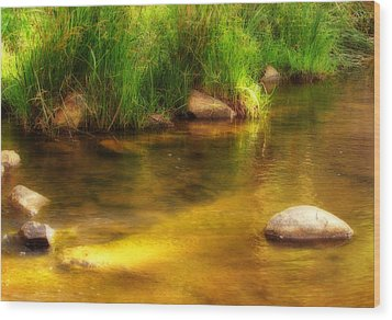 Golden Reflections Wood Print by Michelle Wrighton