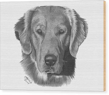 Golden Retriever - 026 Wood Print by Abbey Noelle