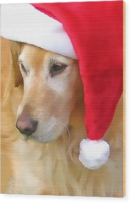 Golden Retriever Dog In Santa Hat  Wood Print by Jennie Marie Schell