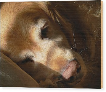 Golden Retriever Dog Quiet Time Wood Print by Jennie Marie Schell