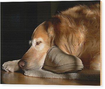 Golden Retriever Dog With Master's Slipper Wood Print by Jennie Marie Schell