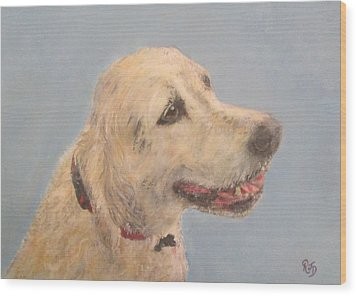 Pet Portrait Of Golden Retriever Maisie  Wood Print