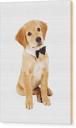 Golden Retriever Puppy Wearing Bow Tie Wood Print by Susan Schmitz