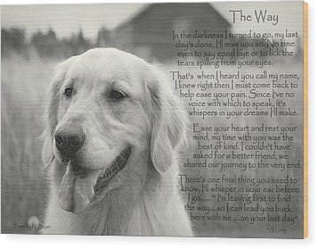 Golden Retriever The Way Wood Print