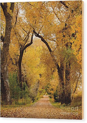 Wood Print featuring the photograph Golden Roads by Steven Reed