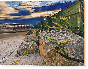 Wood Print featuring the photograph Golden Rod Sunset Wooden Fence Yellow Wildflowers Blue Green Art by Eszra Tanner