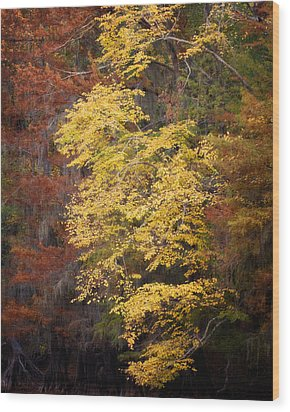 Wood Print featuring the photograph Golden Rust by Lana Trussell