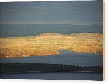 Golden Shores Wood Print