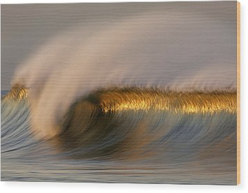 Golden Stripe Mg_9094 Wood Print