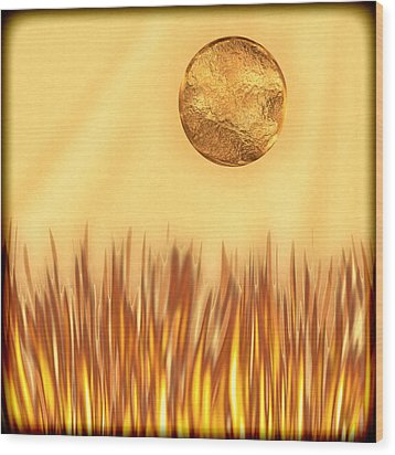 Golden Summers Wood Print by Wendy J St Christopher