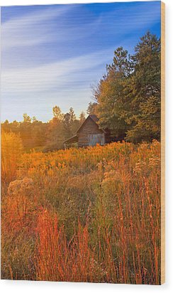 Golden Sunlight On A Fall Morning - North Georgia Wood Print by Mark E Tisdale