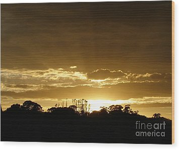 Golden Sunrise Wood Print by Bev Conover