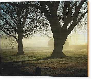 Wood Print featuring the photograph Golden Sunrise by Greg Simmons