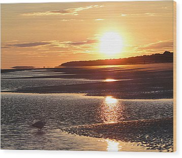 Golden Sunset Wood Print by Cindy Croal