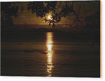 Golden Sunset Wood Print by David Berner