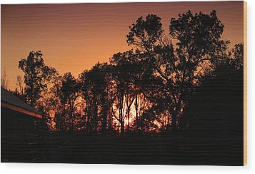 Golden Sunset Wood Print by Rebecca Davis