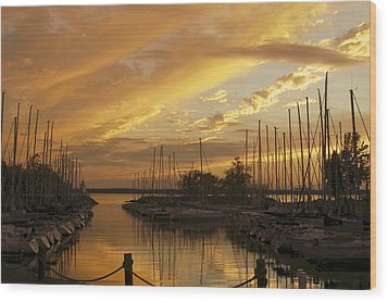 Golden Sunset With Sailboats Wood Print