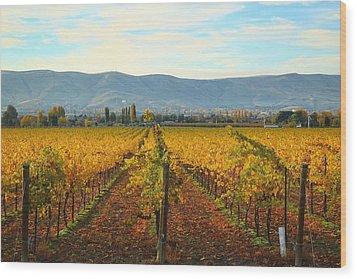 Golden Vineyards Wood Print
