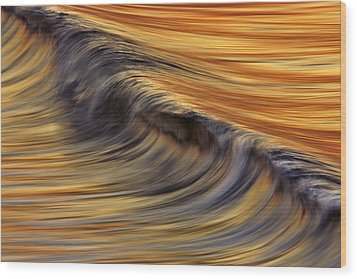 Wood Print featuring the photograph Golden Wave  C6j7800 by David Orias